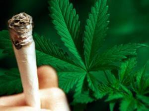 hmed_marijuana_1106